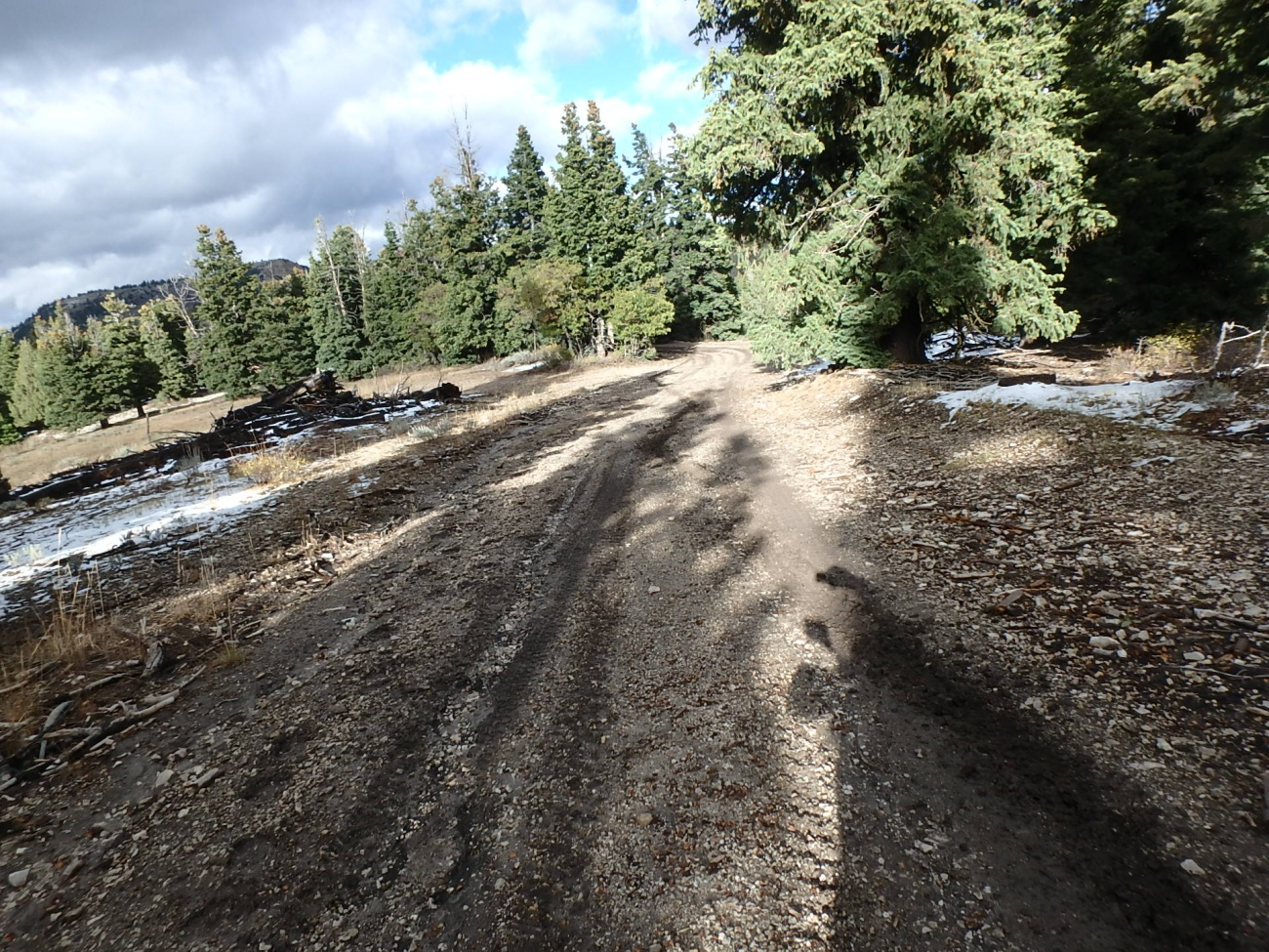 More Mud on the Trans America Trail