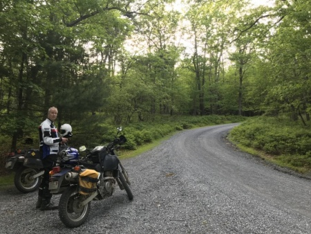 Deep in Michaux State Forest.